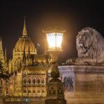 Beleuchteter Löwe der Kettenbrücke und das Parlament am Abend in Budapest