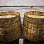 Offene Fassgärung in der Brauerei Pilsner Urquell