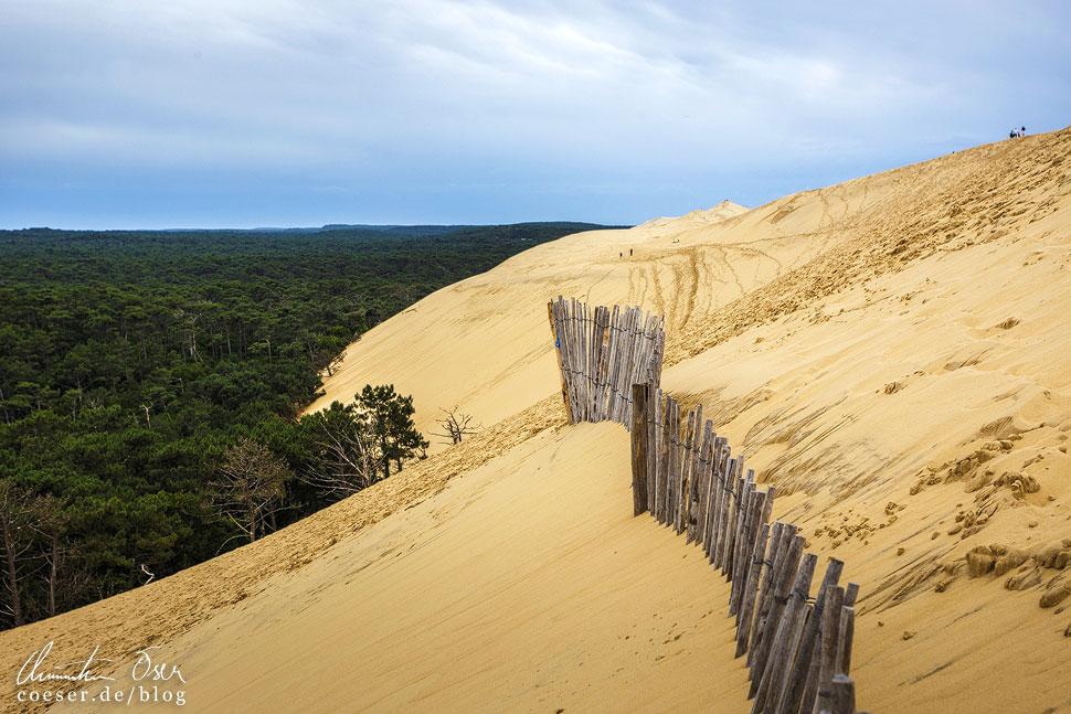 Zäune sollen die Ausbreitung der Wanderdüne in das Landesinnere verlangsamen