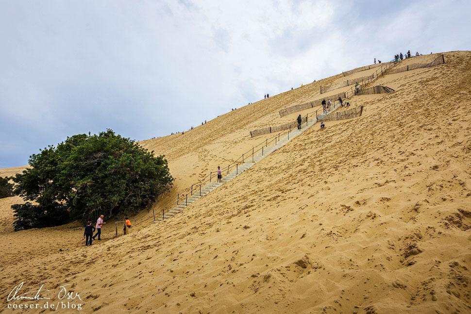 Rund 110 Meter gilt es bergauf zu steigen