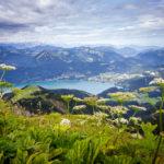 Blick von der Schafbergspitze auf den Wolfgangsee