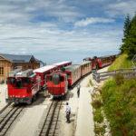 Drei Züge der Schafbergbahn in der Station Schafbergalm