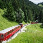 Zwei Züge der Schafbergbahn auf offener Strecke