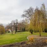 Die Gartenanlage der Villa Tugendhat