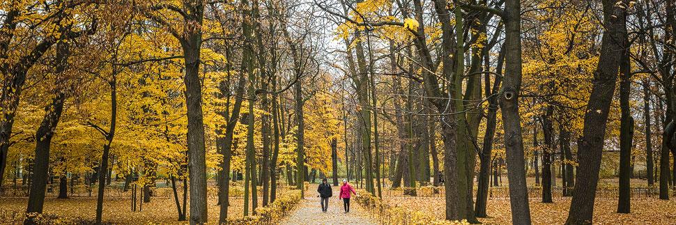 Zwei Spaziergänger im Łazienki-Park