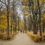 Spaziergänger im Warschauer Łazienki-Park