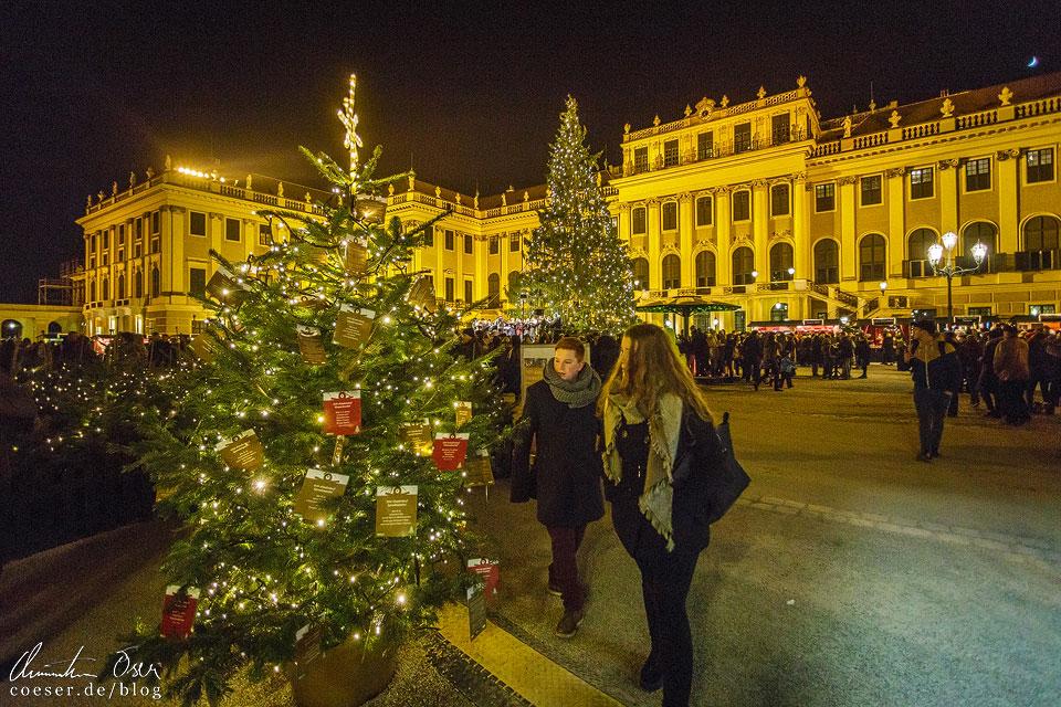 Vor dem Schloss Schönbrunn ist es schwer, nicht in Weihnachtsstimmung zu verfallen