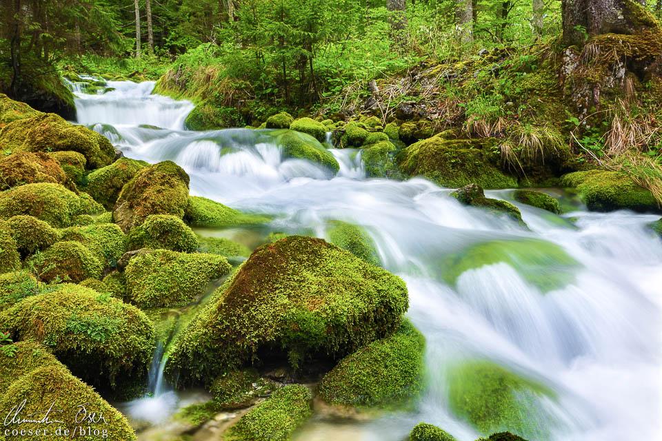 Die Kläfferquelle in Wildalpen, Österreich
