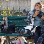 Tauben füttern dürfte ein Volkssport sein, gesehen vor der Kathedrale Notre-Dame de Paris