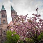 Außenansicht der Sebalduskirche mit Kirschblüten davor