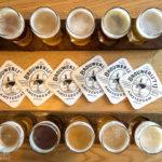 Am besten probiert man sich in der Brauerei Brouwerij 't IJ (Funenkade 7) durch die Sorten durch