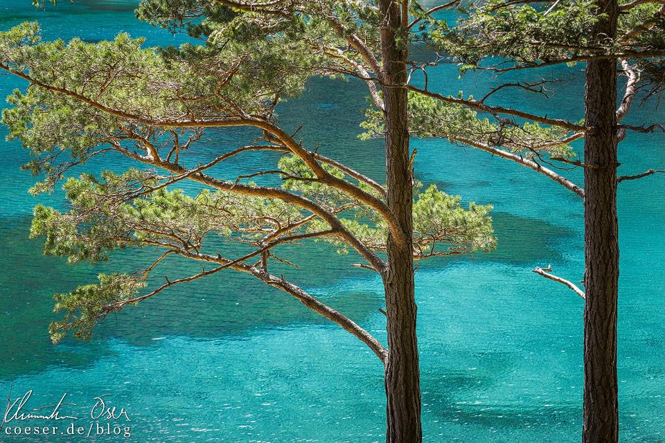 Türkisblaues Wasser des Grünen Sees in Tragöß