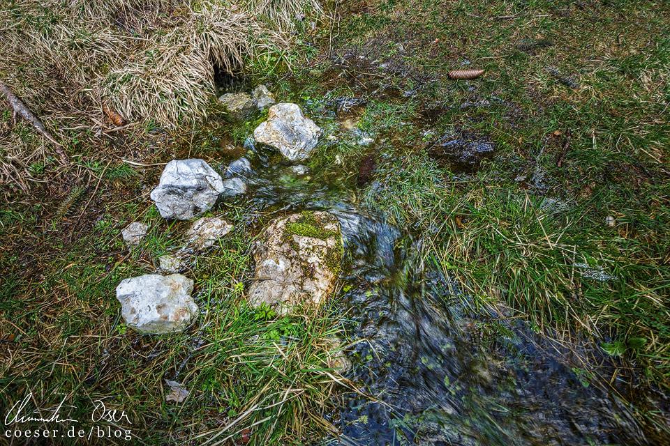 Unterirdische Quellen am Grünen See Tragöß