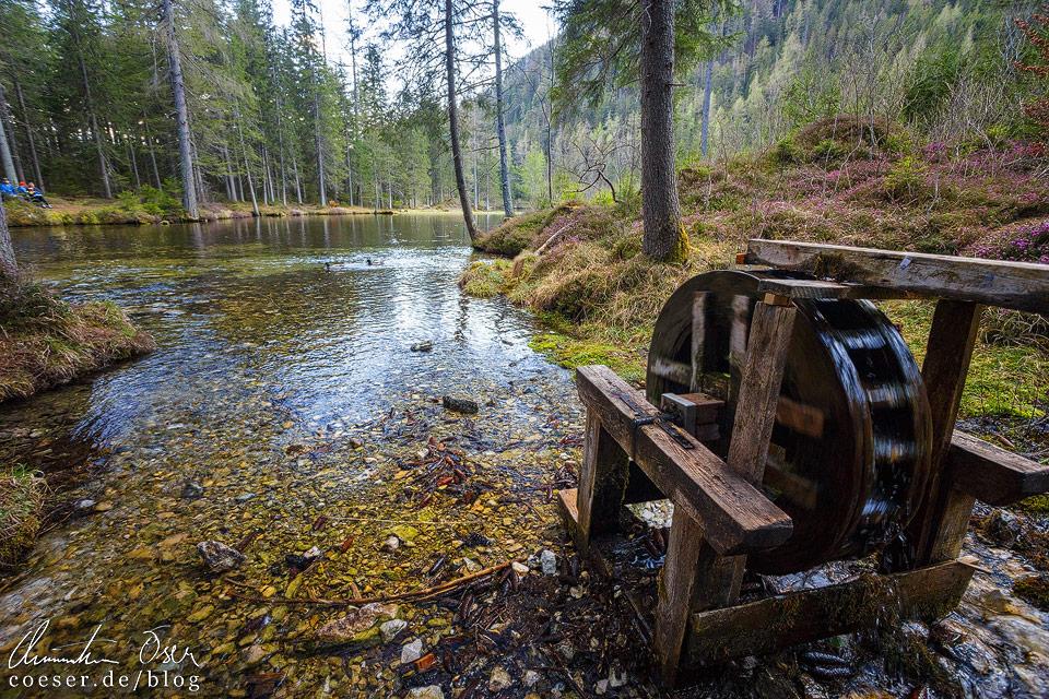 Mühlrad am Kreuzteich nahe des Grünen Sees