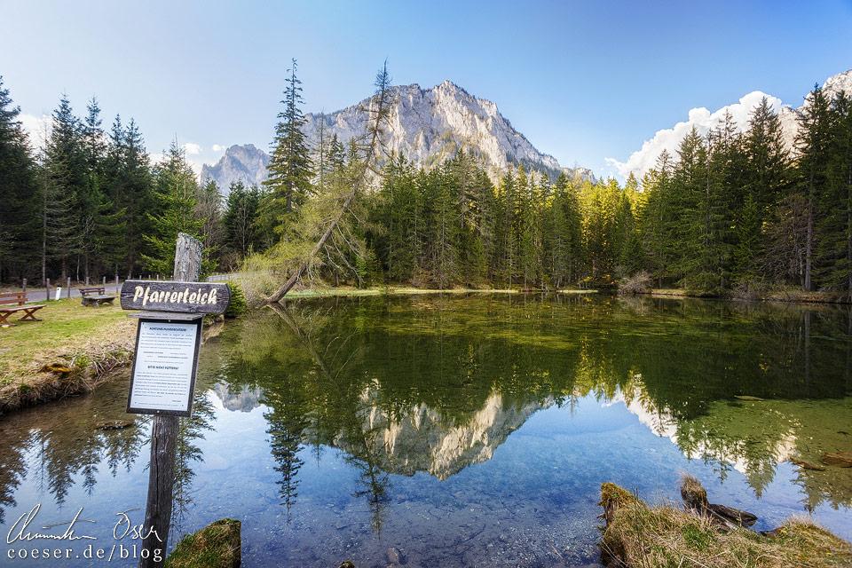 Reflexion des Pribitz-Gipfels im Pfarrerteich nahe des Grünen Sees