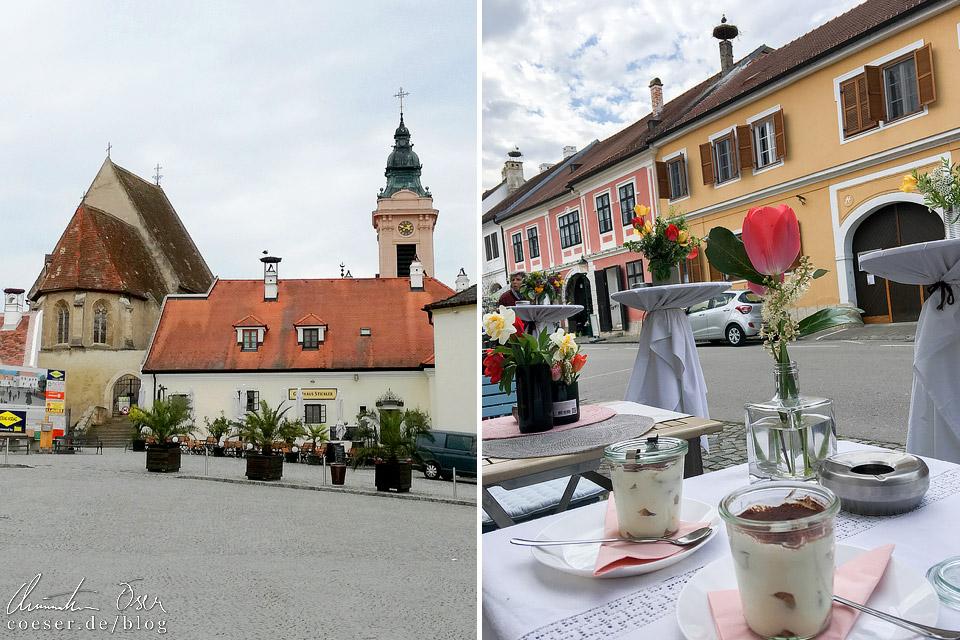 Störche in Rust im Burgenland