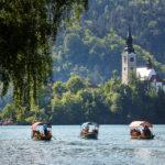 Die traditionellen Pletna-Holzboote auf dem Weg zur Bleder Insel