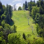 Die Sommerrodelbahn in Bled