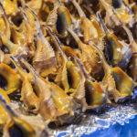 Angebotene Muscheln in der Markthalle Mercado Central