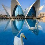 Außenansicht des Aquariums Oceanogràfic in der Stadt der Künste und Wissenschaften