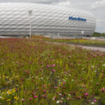 Außenansicht der Allianz Arena München