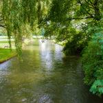 Der Schwabinger Bach im Englischen Garten