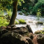 Die Landschaft rund um den Schwabinger Bach im Englischen Garten