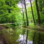 Der Oberstjägermeisterbach im Englischen Garten