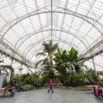 Der Wintergarten des People's Palace And Winter Garden in Glasgow