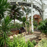 Die Pflanzenwelt im Wintergarten des People's Palace And Winter Garden in Glasgow