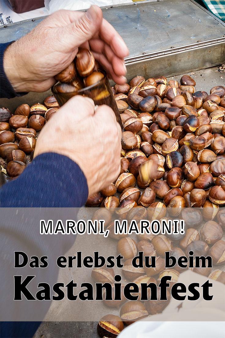 Erfahrungsbericht zum Kastanienfest in Klostermarienberg im Burgenland mit vielen Fotos und allerhand Eindrücken zur jährlichen Feier für die Maroni.