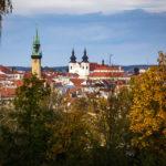 Blick vom Kuhberg auf den Rathausturm und die Dominikanerkirche in Znaim