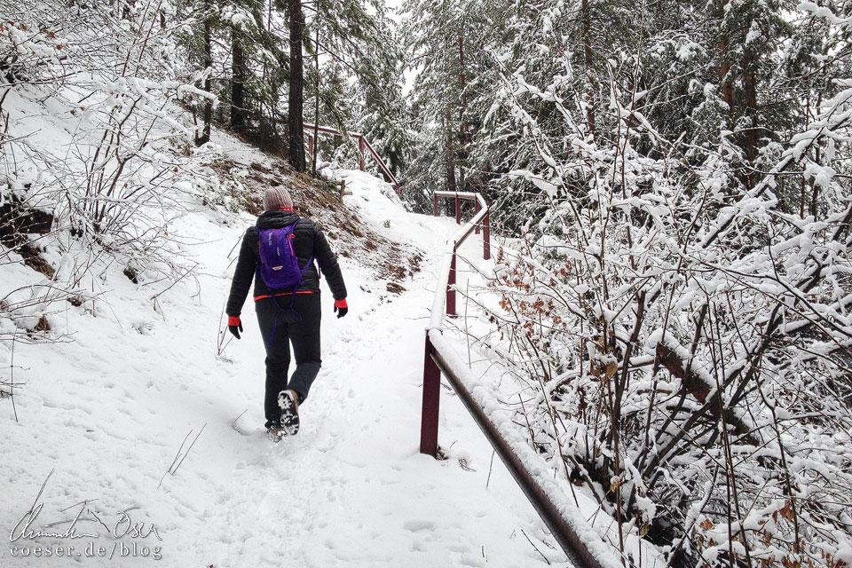 Winter auf dem Semmering Bahnwanderweg