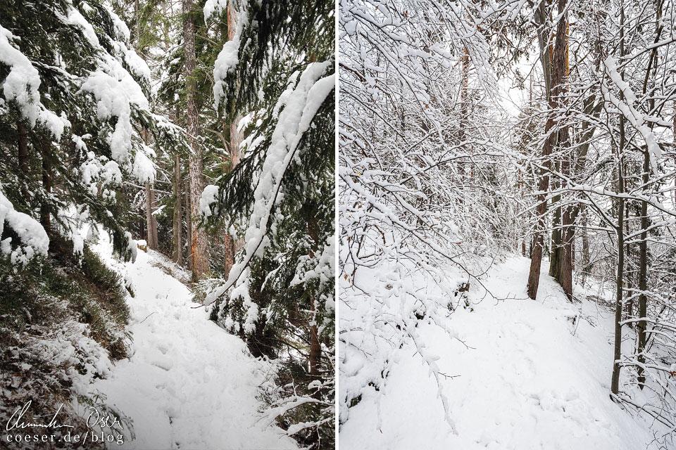 Semmering Bahnwanderweg im Winter