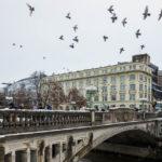 Tauben fliegen über die Drachenbrücke von Ljubljana