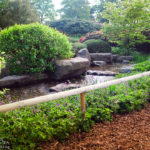 Die Gartenanlage Planten un Blomen