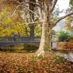 Herbstliche Stimmung vor der Brücke Ponte delle Sirenette im Parco Sempione