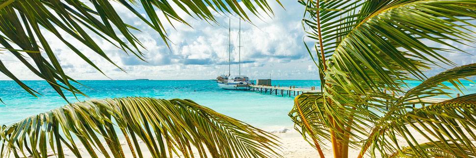 Ein Segelschiff zwischen Palmen auf Meeru (Malediven)