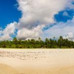 Panorama vom Strand und Palmen auf der Insel Meeru (Malediven)