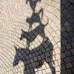 Schatten der Bronzeskulptur der Bremer Stadtmusikanten