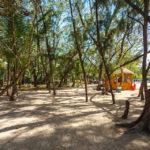 Auch ein Spaziergang im Inneren der Insel Île aux cerfs lohnt sich