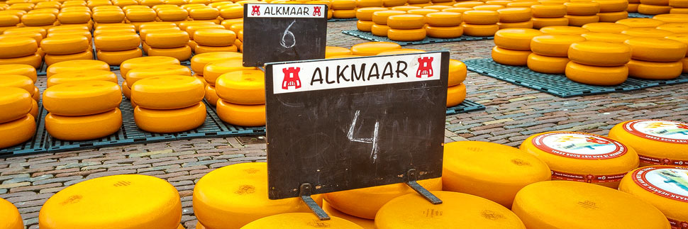 Käselaibe auf dem Käsemarkt in Alkmaar