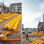 Der Käsemarkt von Alkmaar auf dem Waagplein