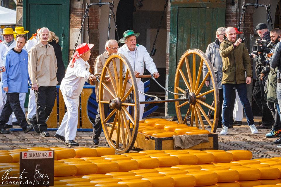 Käsemarkt Alkmaar: Einzug auf den Waagplein