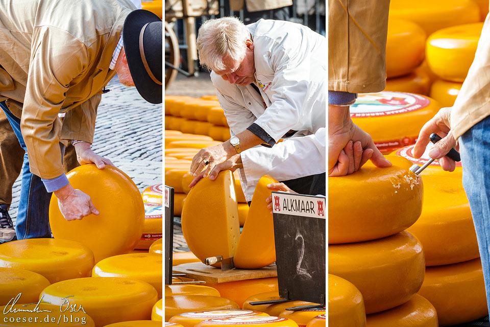 Käsemarkt Alkmaar: Qualitätsprüfung