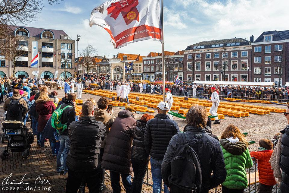 Käsemarkt Alkmaar auf dem Waagplein