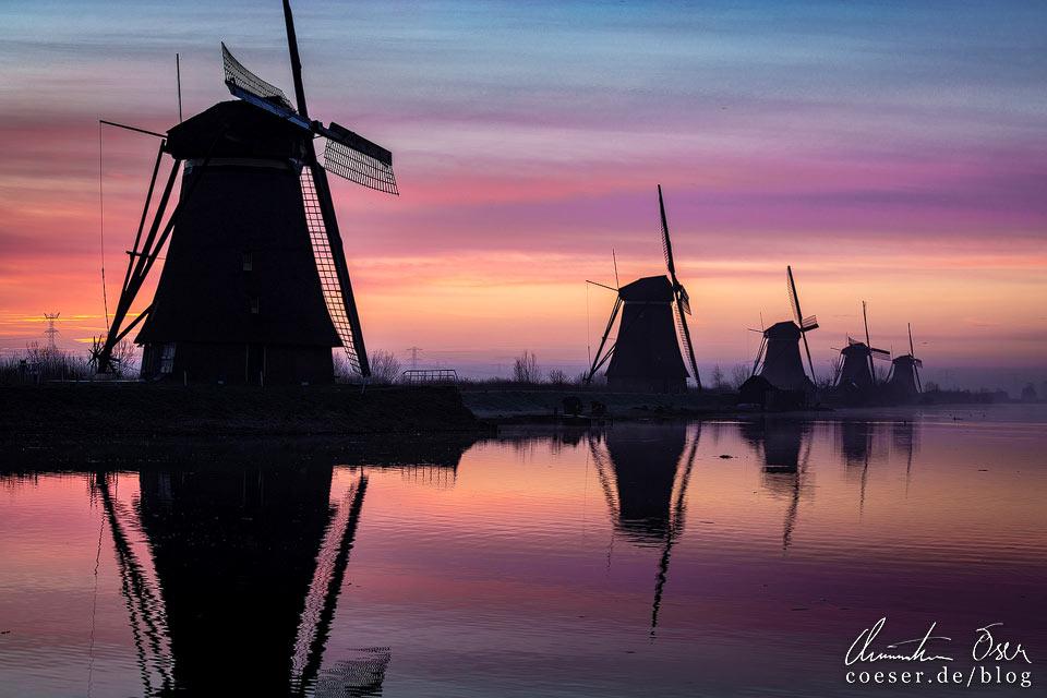 Windmühlen von Kinderdijk in der Morgendämmerung
