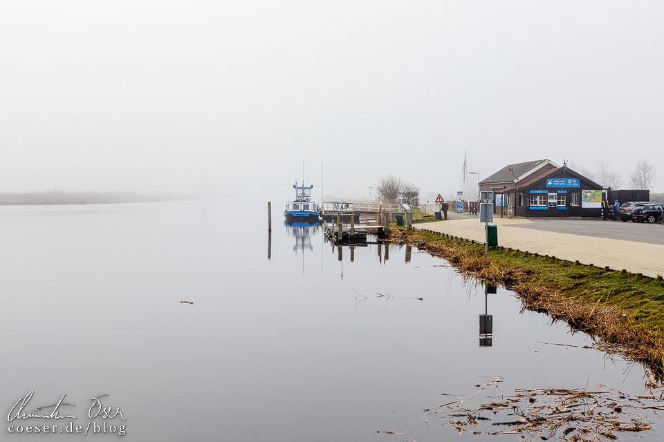 Windmühlen von Kinderdijk vom Nebel verhüllt