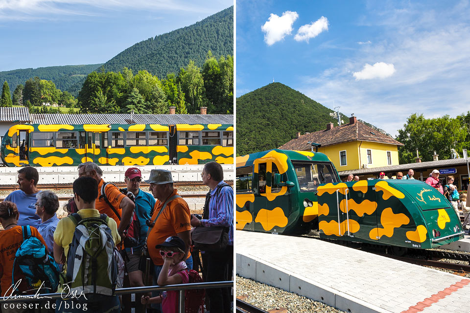 Schneebergbahn im Bahnhof Puchberg am Schneeberg