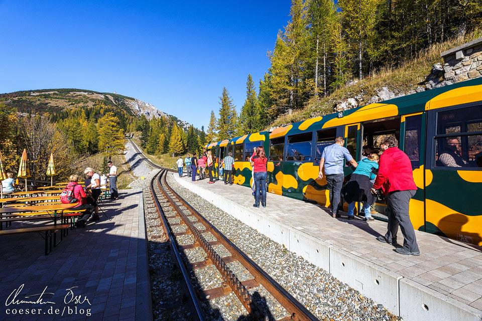 Schneebergbahn in der Haltestelle Baumgartner